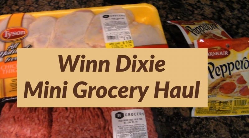 Winn Dixie | Mini Grocery Haul 1