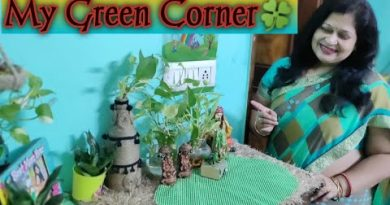 Green Corner Decoration Ideas   Indoor Plants Decoration   Money plant Decor   Diwali Green Corner. 2