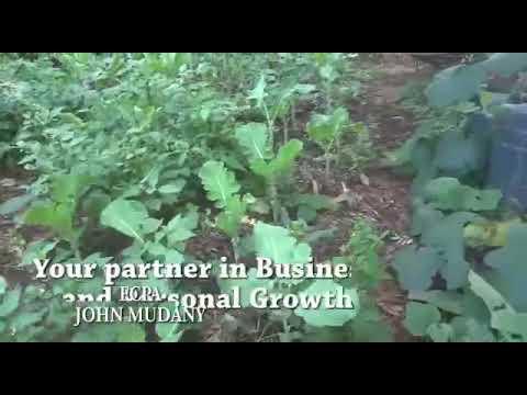3 money making ideas from farming 1