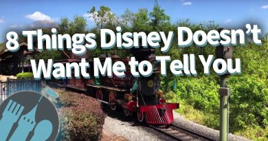 8 Things Disney Doesn't Want Me To Tell You! 2