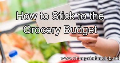 HOW TO STICK TO YOUR GROCERY BUDGET (WHATEVER IT IS) 4