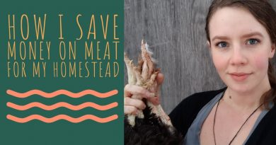 How I Save Money On Meat For My Homestead 2