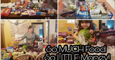 Discount Store & Walmart Grocery Haul { Low Spend Month } 2